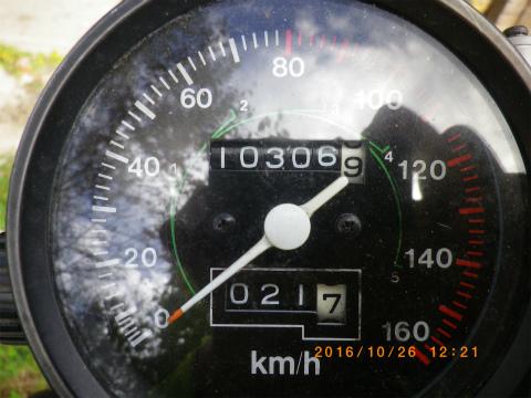 IMGP3019.jpg